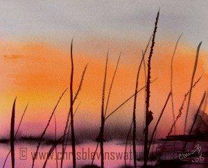 robins sunset