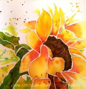 2015-06-17 Chris' SunflowerRW
